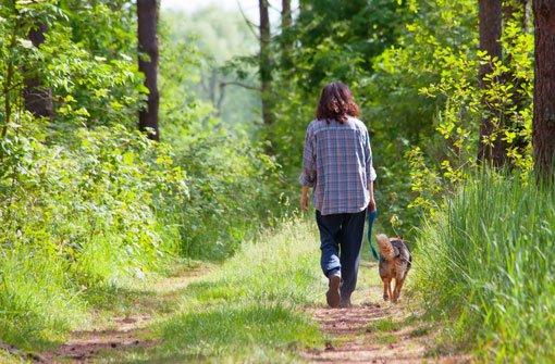 Bekanntschaften mit hund Singles Hund - Bekanntschaften - Partnersuche & Kontakte -