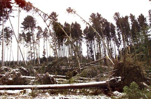 Orkan Lothar vor 15 Jahren: Erst die stille, dann die stürmische Nacht - Stuttgarter Nachrichten