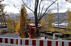 Baumfällarbeiten an der Ehmannstraße in Stuttgart-Nord: Um Platz für den Tunnel unter dem Rosensteinpark zu schaffen, hatte die Bahn am 6. November 2012 dort mit den Baumfällarbeiten begonnen. Jetzt gab die Bahn bekannt, dass sie das geplante Fällen der Bäumen am Rande des Rosensteinparks bis zum Herbst verschiebt. Foto: www.7aktuell.de