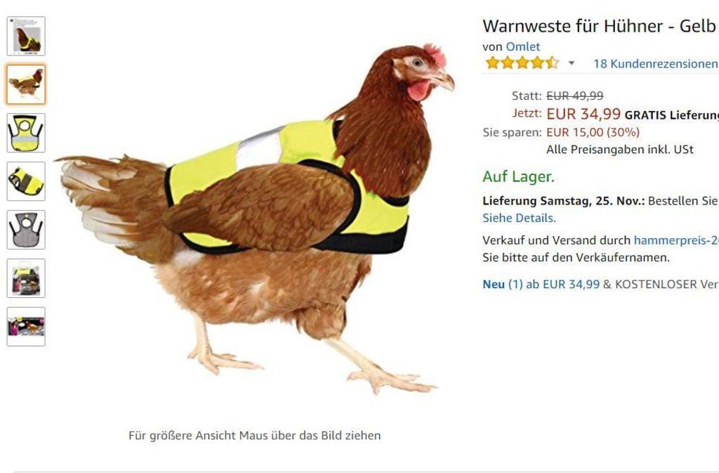 Lustige Hühner Bilder Kostenlos