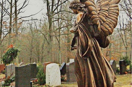 Der Friedhof soll Lebensraum bleiben