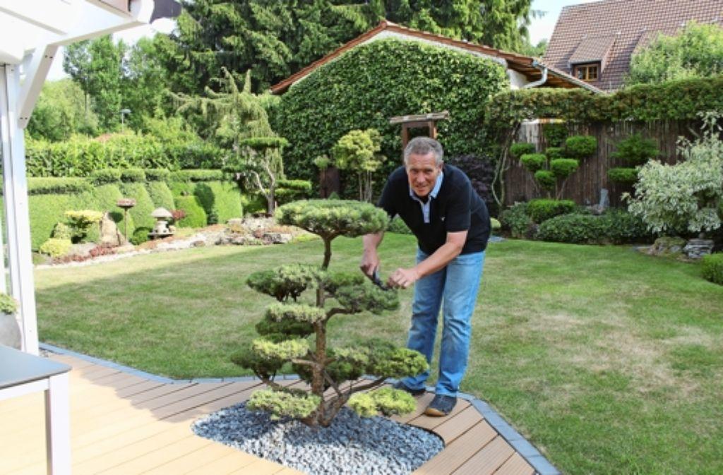 Au ergew hnlicher garten klein versailles in bergheim for Gartengestaltung klein