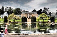 Er ist der Mittelpunkt des Maurischen Gartens in der Stuttgarter Wihelma: Der Seerosenteich. Unsere Leserfotografen haben ihn in stimmungsvollen Bildern festgehalten!br Foto: Leserfotograf burgholzkaefer