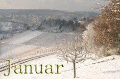 Der Januar 2010 - was alles in diesem Monat in Stuttgart und Region passierte, zeigen wir Ihnen hier. Foto: Leserfotograf Nanny Hiller (Montage)