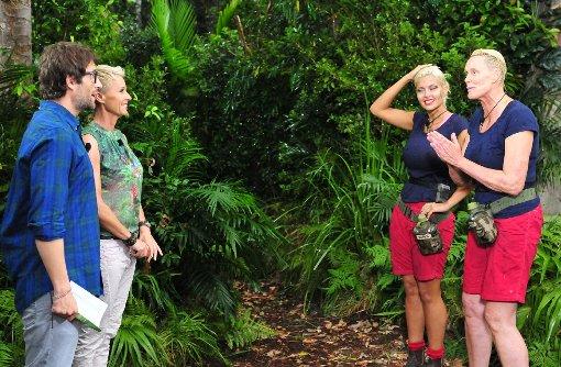 Dschungelprüfung 13 Dschungel-Metzgerei: Brigitte Nielsen (r.) und Sophia Wollersheim (2.v.r.) wurden von der Camp-Gemeinde zur Dschungelprüfung geschickt. In der Dschungel-Metzgerei gibt es nicht nur div. dschungeltypische Leckereien. Die Stars müssen auch noch eine vorgegebene Mindestmenge schätzen. Nur wenn sie richtig geschätzt haben und alles verzehrt ist, bekommen sie die begehrten Sterne. Doch zuerst werden sie von Moderatorin Sonja Zietlow und Moderator Daniel Hartwich begrüßt. Foto: RTL