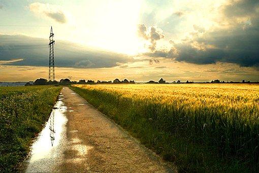 Das Wetter für Stuttgart und die Region samt Biowetter gibt es hier. Foto: Leserfotograf chrisho