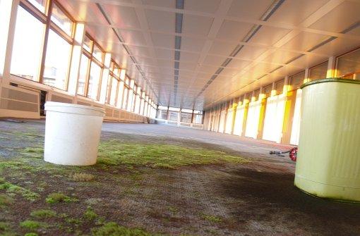 Investor stellt Infos zum Garden Campus ins Netz