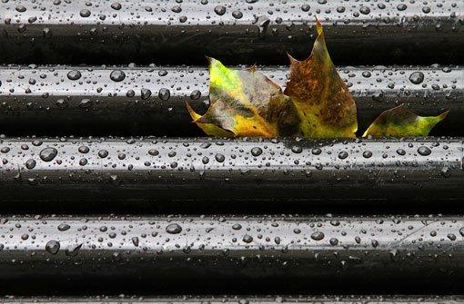 Der Dienstag zeigt sich bedeckt und regnerisch