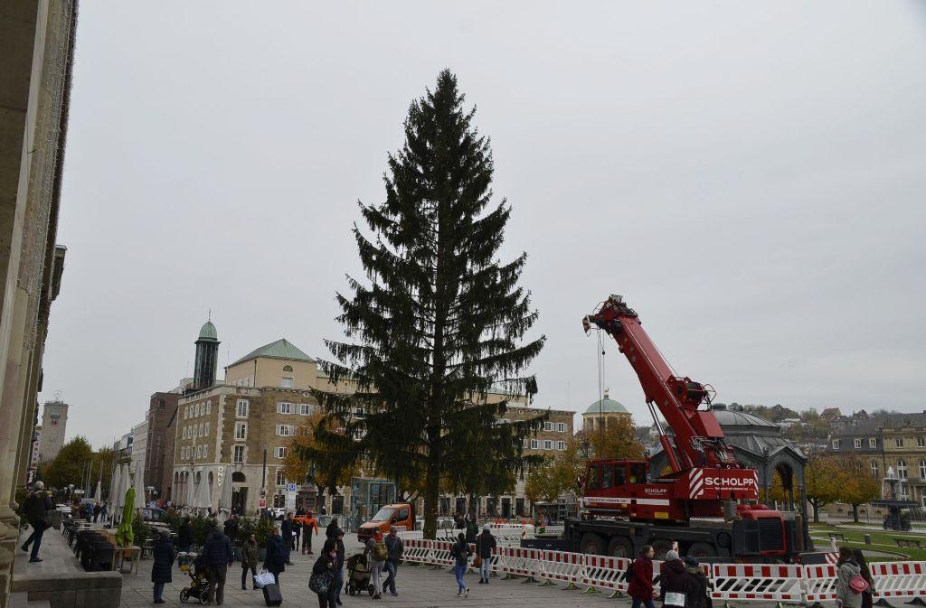 Durchmesser Weihnachtsbaum.Stuttgart Weihnachtsbaum Steht Auf Dem Schlossplatz Stuttgart