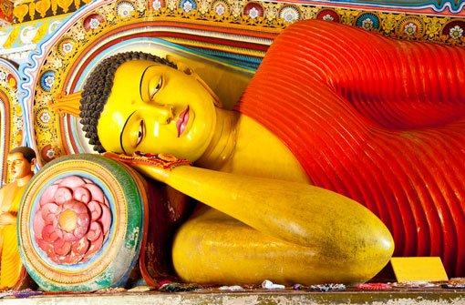 Buddha, Buddha und nochmals Buddha