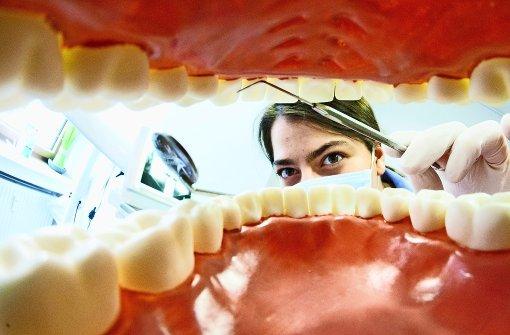 Von Feuerwehr bis Zahngesundheit