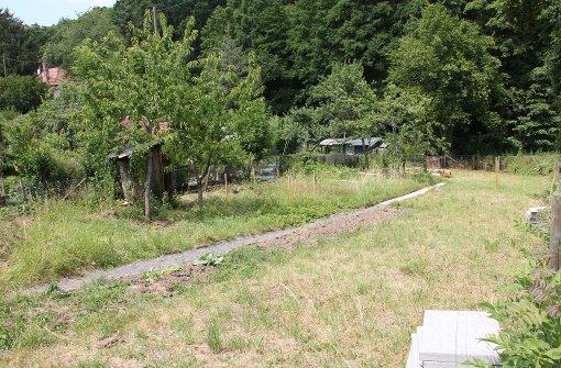 Gartenfreunde wollen  Ort der Begegnung schaffen