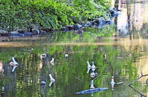 Feiernde lassen Müll am Riedsee liegen