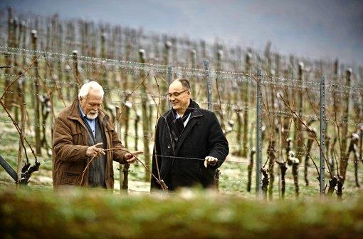 Der Stadtrat Bernhard Dippon (links) und der Pfarrer Rainer Köpf  beim Ideensammeln für den Biblischen Weinweg. Foto: Gottfried Stoppel