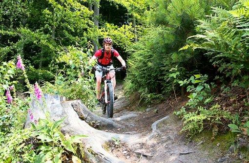 Das Fahren auf schmalen Waldwegen ist in Baden-Württemberg eigentlich  verboten,  wird in der Praxis aber meist geduldet. Foto: DIMB