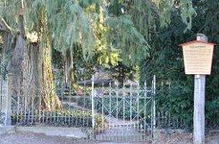 Eine Besonderheit des Gottesackers in Sichtweite zum Schloss: Als einziger Friedhof in Stuttgart wird er nicht von der Stadt verwaltet, sondern vom Land. Foto: Leserfotograf acht