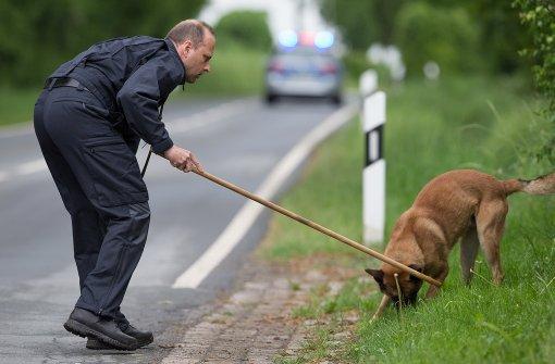 Spürhunde suchen nach Überresten des Opfers