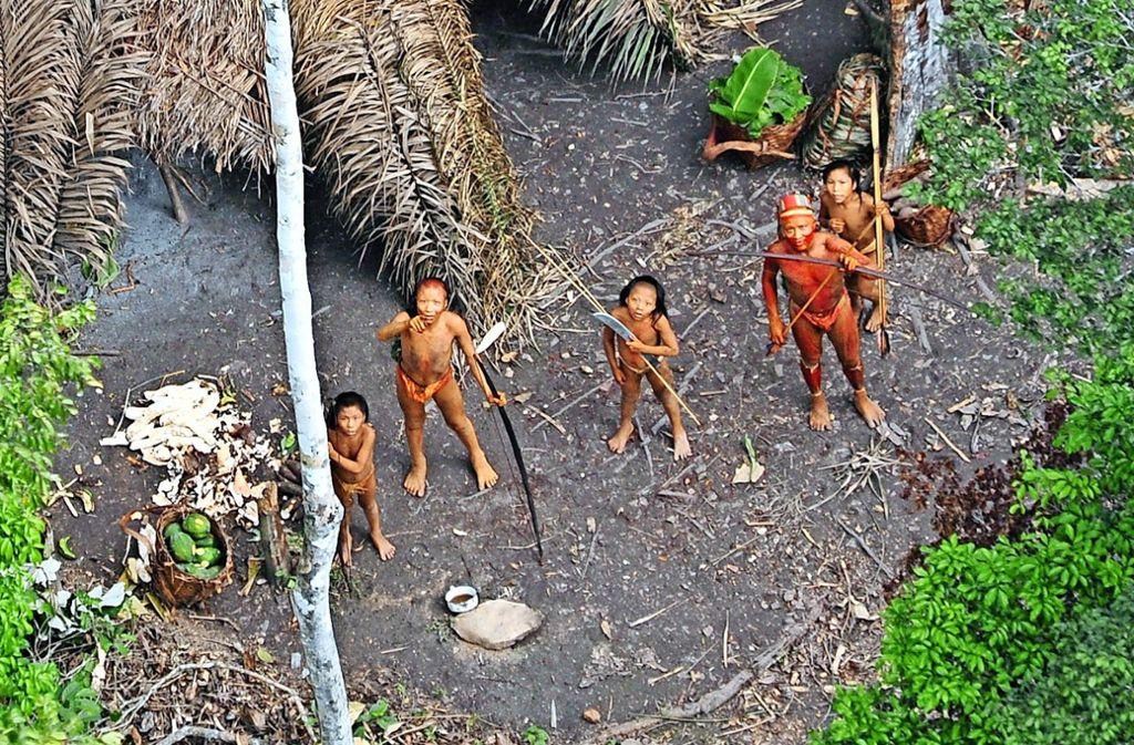 Ureinwohner Im Amazonas Entdeckt Brasiliens Indianer Suchen Schutz