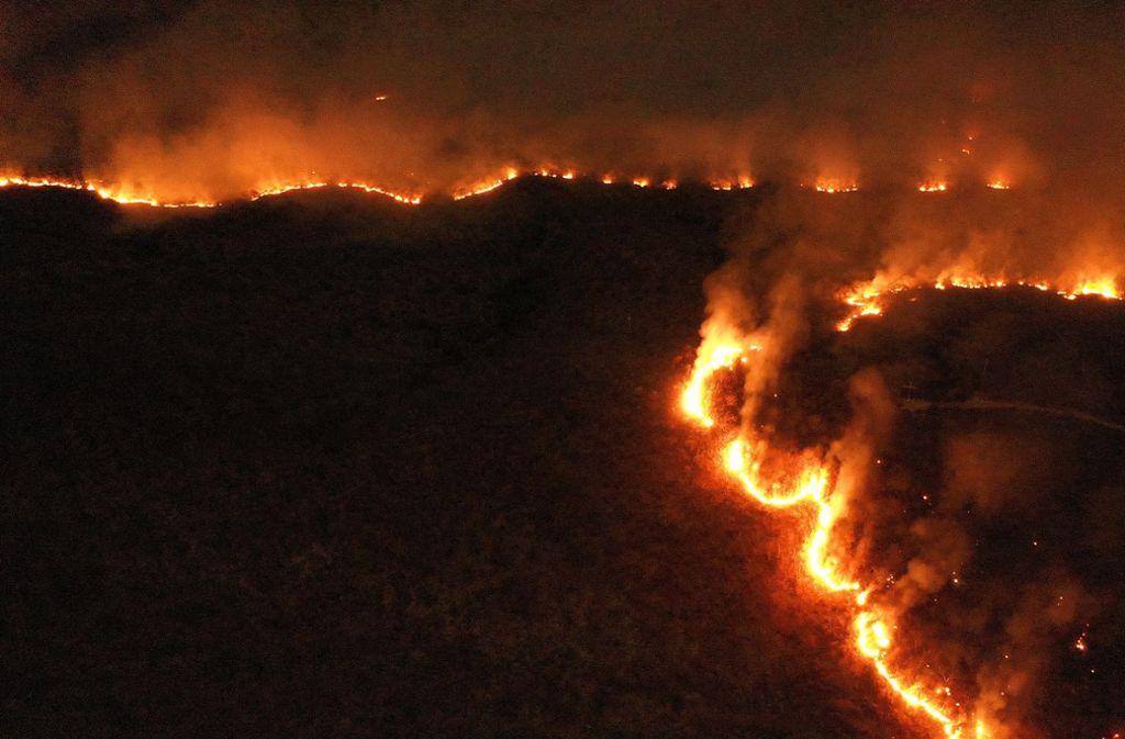 Amazonas Feuer
