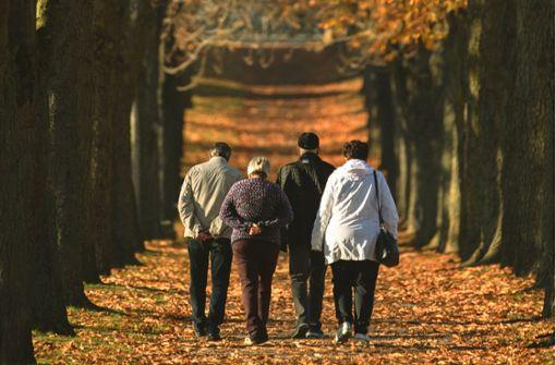 Rentenversicherung warnt vor Risiken: Rentenerhöhung fällt ...