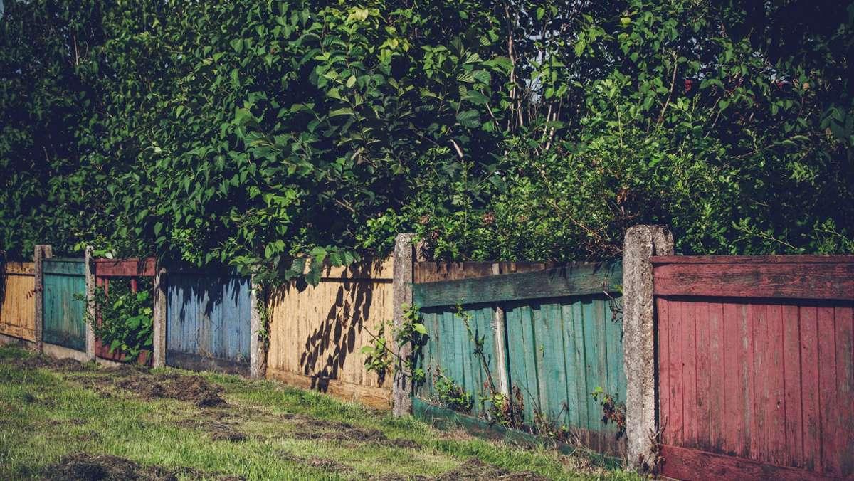 Regeln für Gartenzaun, Pflanzen und Co. Grundstücksgrenzen – das ...