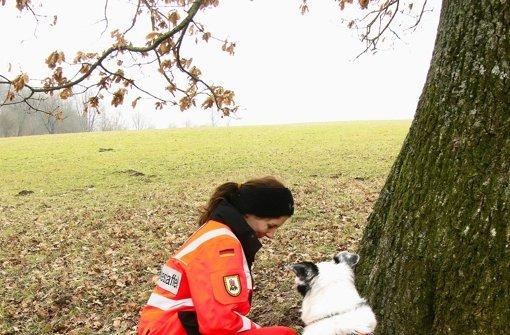 Gefunden! Rettungshund Leo hat beim Training eine Person aufgespürt. Foto: Jens Noll