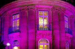 Die Villa Reitzenstein war am Freitagabend ein besonderer Blickfang - sie erstrahlte in violettem Licht. Die baden-württembergische Landesregierung hat damit ein Zeichen gegen die Todesstrafe gesetzt.br   Foto: Staatsministerium