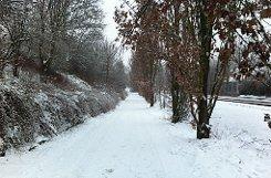 Schnee ohne Chaos: Nach dem Blitzeis vom Sonntag ist das gefürchtete Verkehrkollaps am Montagmorgen in Stuttgart und dem Umland ausgeblieben. Foto: hel