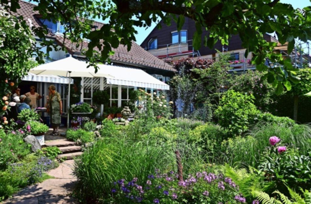 offener garten in riedenberg eine oase in der gro stadt plieningen stuttgarter nachrichten. Black Bedroom Furniture Sets. Home Design Ideas