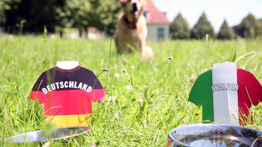 Unser Leberwurst-Orakel tippt das Deutschlandspiel