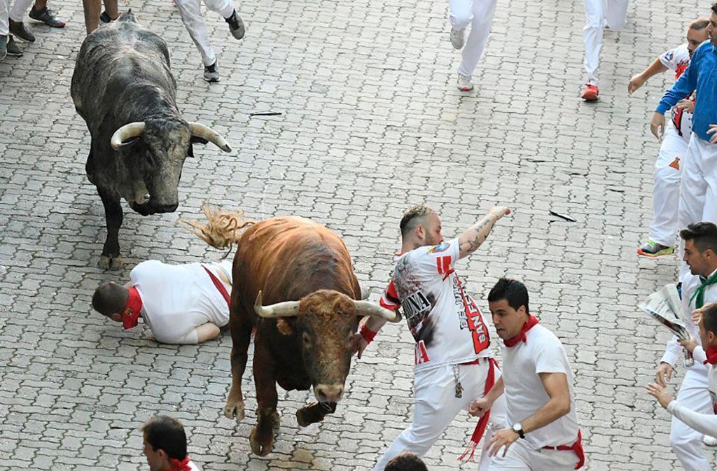 Stierhatz Pamplona