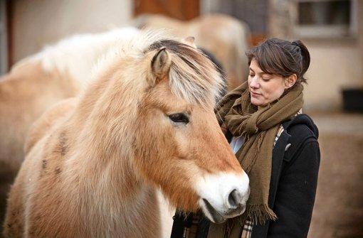 Auf Pferden stellt sich Balance ein