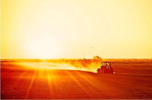 Berufsrisiko Sonne