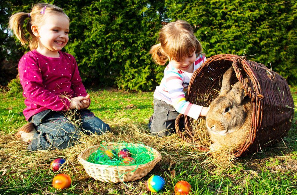 Darf Ich Ostern Mit Der Familie Feiern