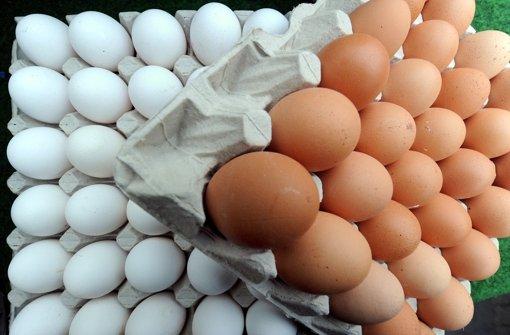 Der Großteil des hiesigen Bedarfs  an Eiern wird aus   Norddeutschland gedeckt. Verbraucherministerin Aigner kritisiert Niedersachsen. Foto: dpa