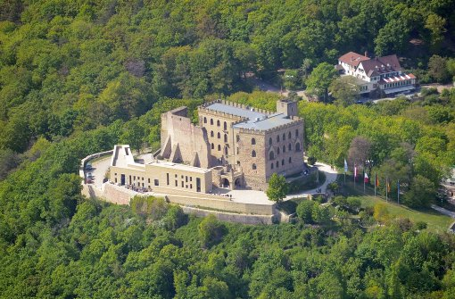 AfD-Tagung auf Hambacher Schloss erhitzt Gemüter