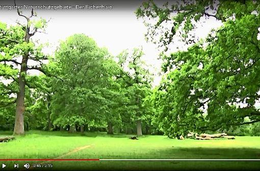 Das Kleinod Eichenhain in zwei Kurzfilmen