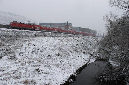 Nach Auskunft der Bahn wurden die Bäume gefällt, um den Bau vorzubereiten. Foto: Schmidt