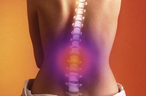 Alltagsschmerz im Rücken