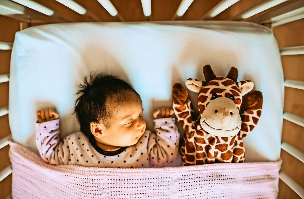 reproduktionsmedizin gro e fragen f r eine kleine messe politik stuttgarter nachrichten. Black Bedroom Furniture Sets. Home Design Ideas