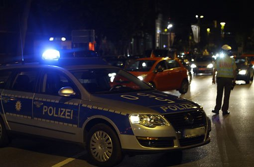 Nachdem sie in der Nacht auf Samstag einen Unfall im Stuttgarter Süden verursacht hatten, ließen zwei Männer einen Kampfhund frei und flüchteten schließlich. (Symbolbild) Foto: SIR