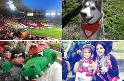 Diese und andere wunderbaren Fanfotos zum VfB Stuttgart haben uns unsere fleißigen Leser eingereicht - wir bedanken uns dafür und zeigen hier eine Auswahl der schönsten Bilder. Klicken Sie sich durch: Foto: Montage: SIR
