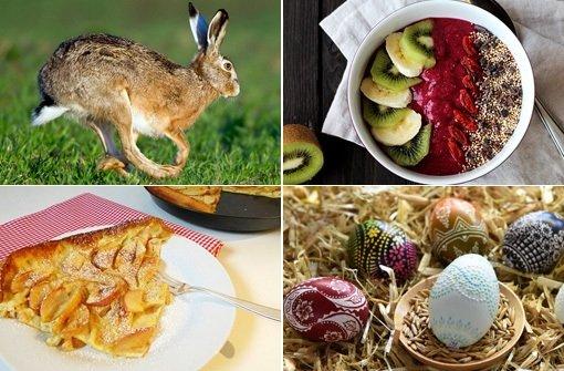Auch in Stuttgart wird Brunchen an Ostern immer populärer. Foto: dpa/holunderweg 18/Collage