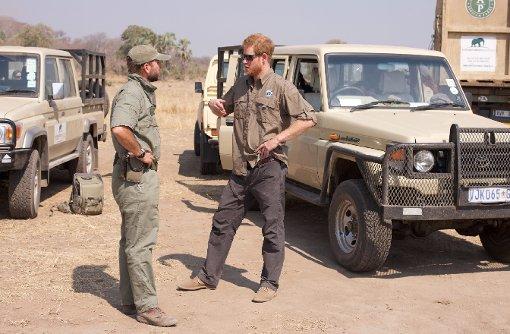 Prinz Harry hilft Elefanten in Malawi