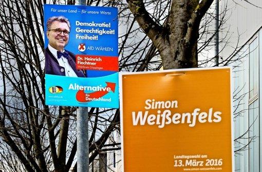 """Nur am Straßenrand kommt es zur direkten Konfrontation zwischen der AfD und den """"Altparteien"""". Foto: Horst Rudel"""