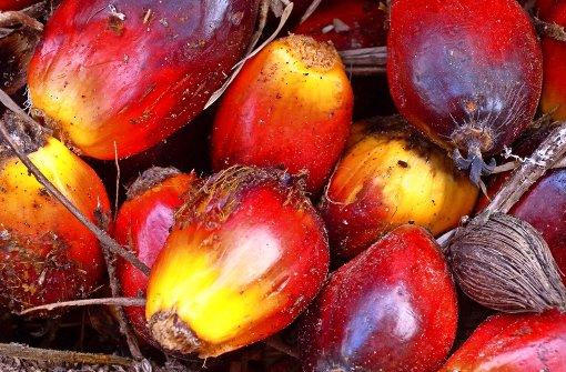 Ohne Palmöl geht es auch nicht
