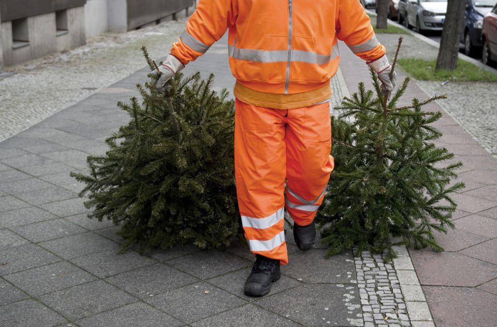 Gaststätte Tannenbaum.Sammelstellen In Stuttgart So Entsorgen Sie Ihren Weihnachtsbaum