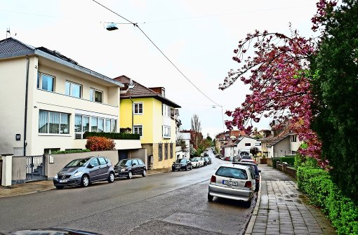 Bezirksbeirat lehnt Baumkonzept ab