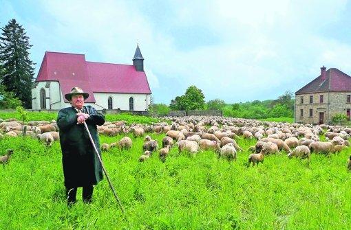 Schäferei ist auf der Alb noch verbreitet – hier Gerhard Stotz mit Herde. Foto: Sachsenmaier