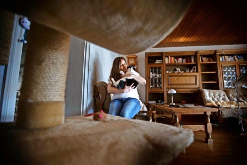 frau aus korb in verzweifelter lage haustiere in der mietwohnung rems murr kreis. Black Bedroom Furniture Sets. Home Design Ideas